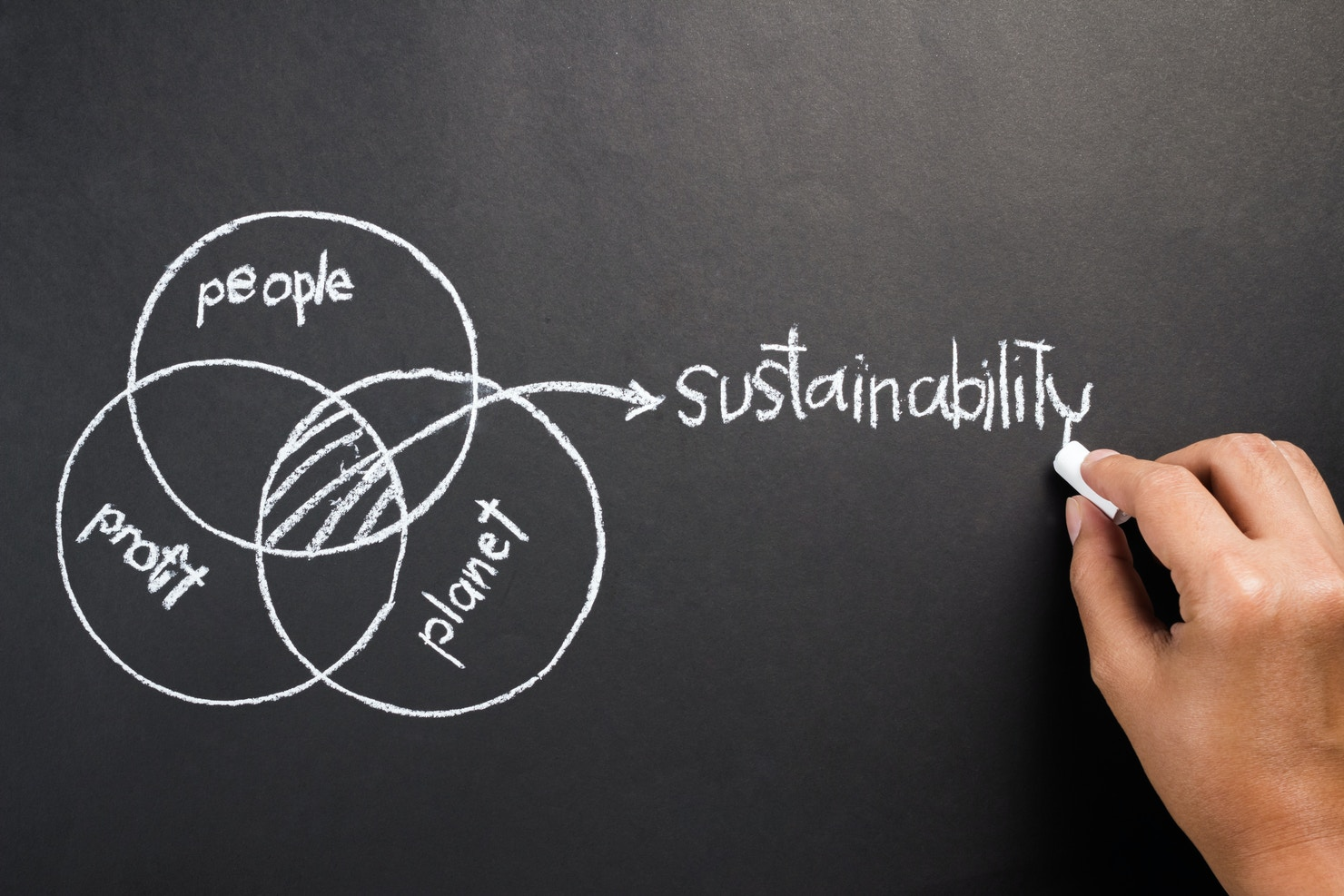 Buildng a new type of sustainability